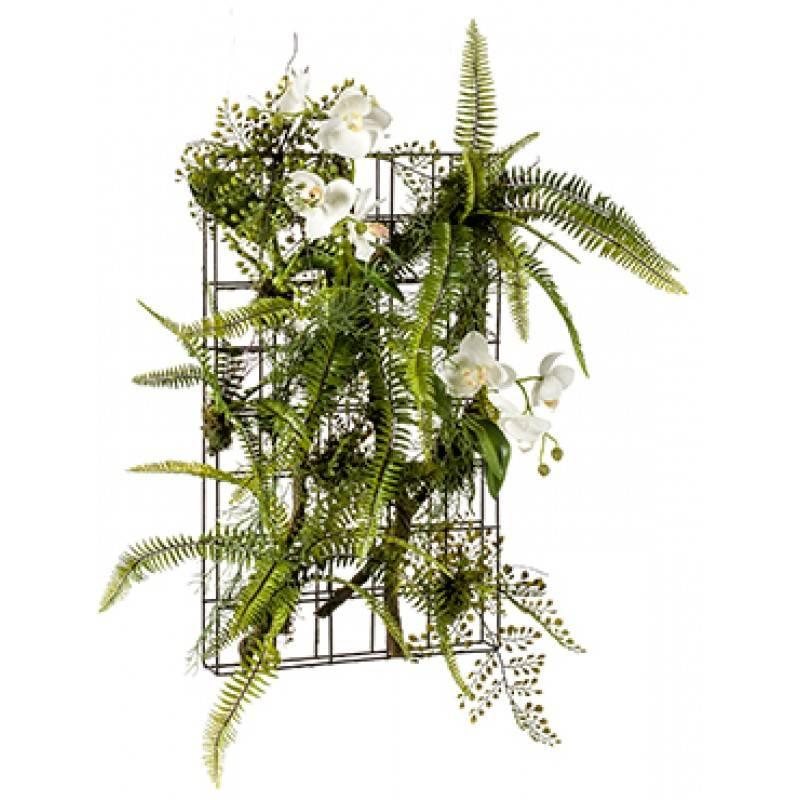 Королева тропиков — орхидея. как посадить красавицу дома и ухаживать за ней?