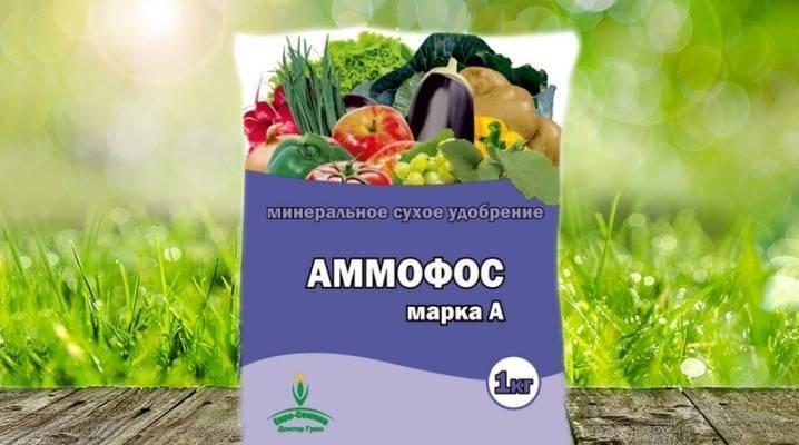 Аммофос: применение удобрения, состав и описание, форма выпуска