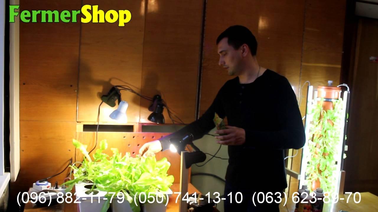 Как открыть свое дело на гидропонике и заработать большие деньги. бизнес на выращивании растений прибыльное дело.