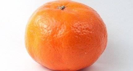 К чему снятся мандарины и мандариновое дерево с плодами