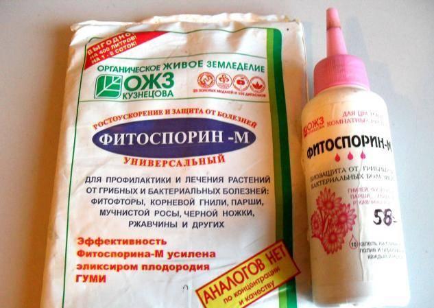 «фитоспорин-м»: описание, рекомендованные способы применения и дозировка