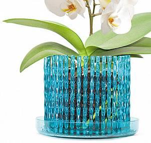 Посадка орхидеи на блок: что это за метод, как посадить растение своими руками, какой материал подходит и в чём преимущество такого способа выращивания? selo.guru — интернет портал о сельском хозяйстве