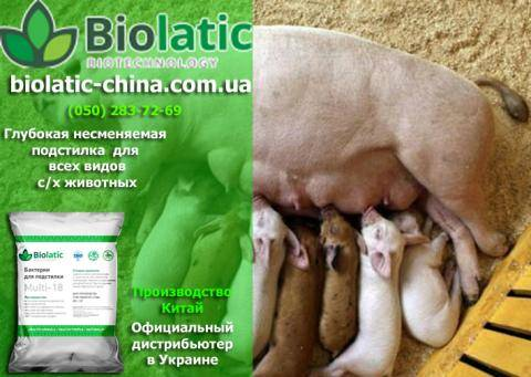Виды и правила использования подстилок для свиней