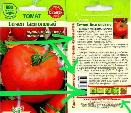 Семена помидоров: как правильно обработать перед посадкой на рассаду