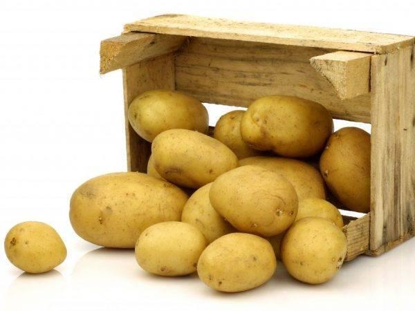 Как хранить картошку на балконе зимой: ящик для хранения картофеля и овощей
