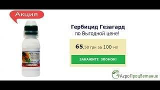 """Инструкция по применению препарата """"гезагард"""" в огороде"""