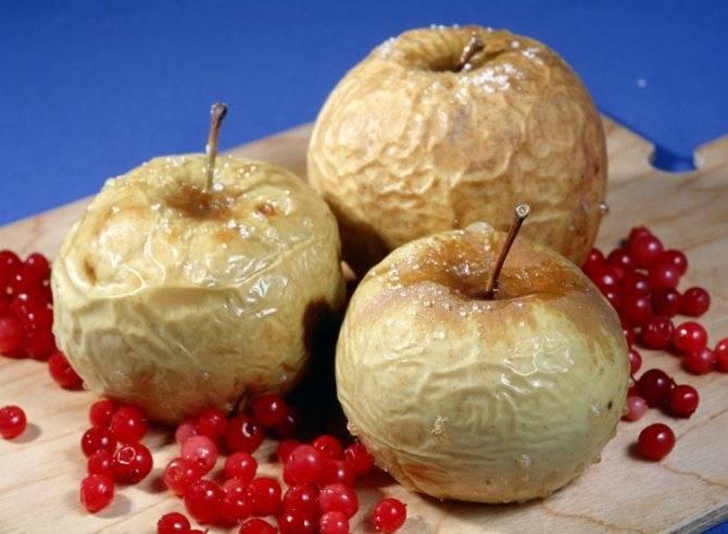 Сушеные яблоки: польза и вред для здоровья, полезные свойства