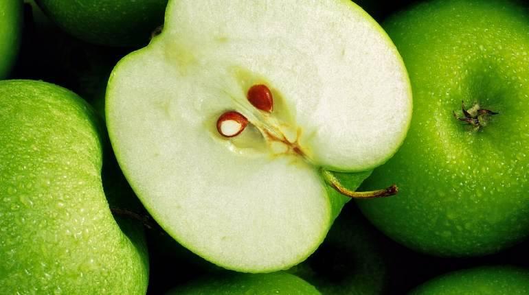 Семечки яблок — польза и вред для организма мужчины и женщины. полезные свойства и противопоказания