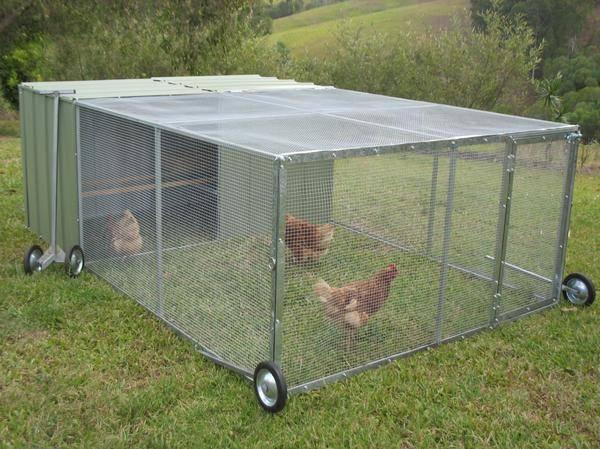 Клетки для кур - 90 фото оптимальных размеров для правильного содержания птицы