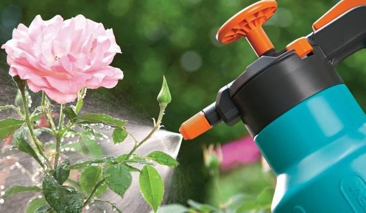 Применение железного купороса в садоводстве, инструкция для обработки деревьев, винограда - почва.нет