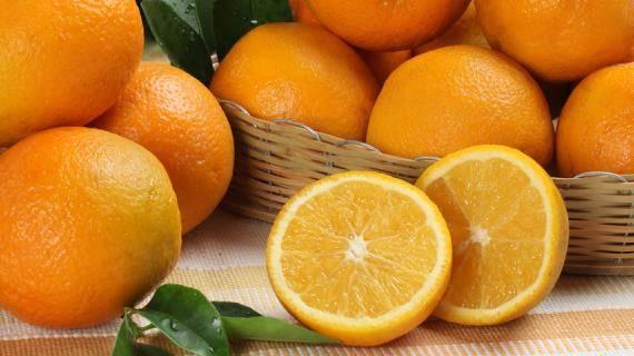 Растение апельсин: характеристика видов и сортов, выращивание в домашних условиях,  история происхождения апельсина