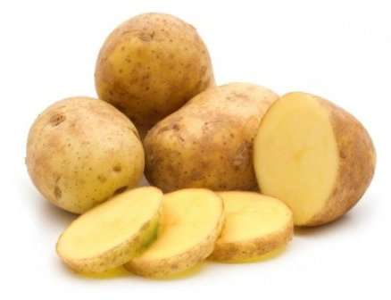 Картофель лига: описание сорта, посадка, уход, фото, отзывы