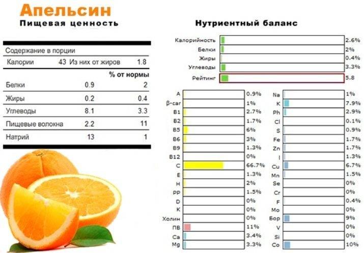 Химический состав и пищевая ценность апельсина, калорийность на 100 грамм, какие витамины содержатся
