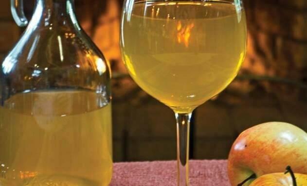 Как вырастить винный, чайный, рисовый, кефирный и молочный гриб в домашних условиях с нуля?
