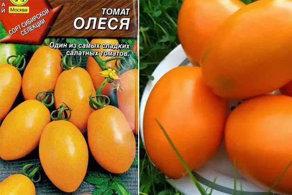 Томат олеся: отзывы, фото, урожайность, описание и характеристика | tomatland.ru