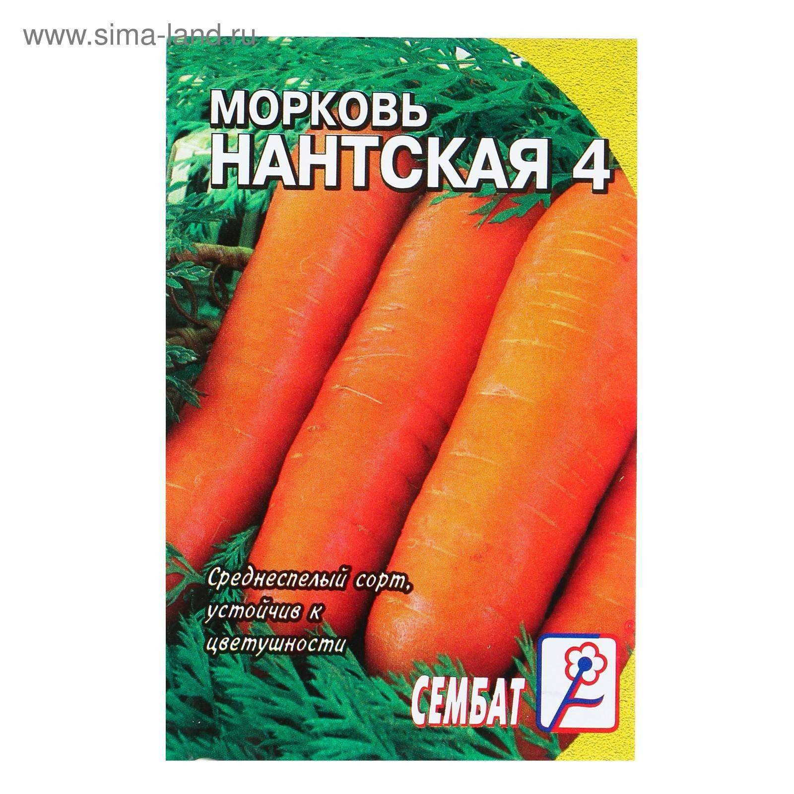 Морковь нантская 4 — описание сорта, фото, отзывы, посадка и уход