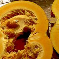 Выращивание и посадка тыквы в открытом грунте в подмосковье, лучшие сорта
