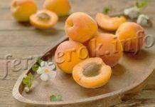 Описание самоплодных сортов абрикоса