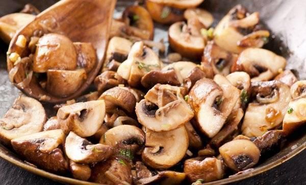 Королевские шампиньоны: чем отличаются от обычных белых, грибы с коричневой шляпкой