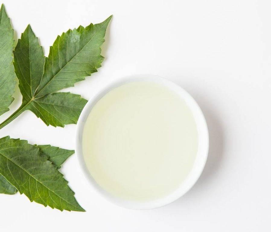 Касторовое масло для комнатных растений
