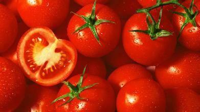 Томат толстой: отзывы, фото, урожайность, характеристика и описание сорта, достоинства и недостатки