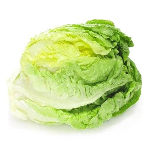 Польза салата айсберг и вред: 110 фото и видео приготовления, описание и калорийность