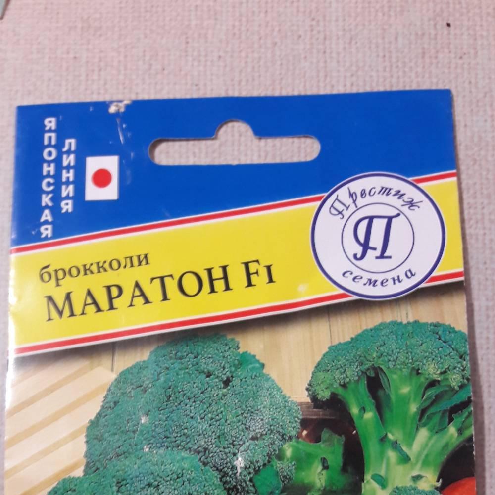 Описание капусты брокколи маратон f1
