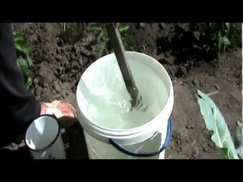 Мочевина или карбамид: состав и способы применения удобрения на огороде для овощей и ягод и плодовых деревьев