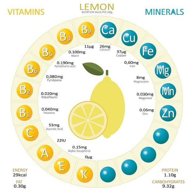 Содержание витамина с в лимоне и лимонной кислоте