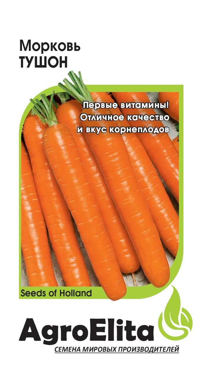 Лучшие сорта моркови: для хранения на зиму, урожайные, сладкие, крупные и другие