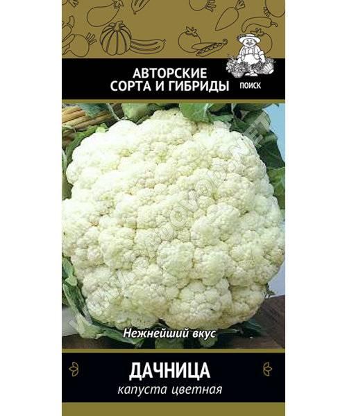 Цветная капуста | сад и огород - интернет журнал о даче