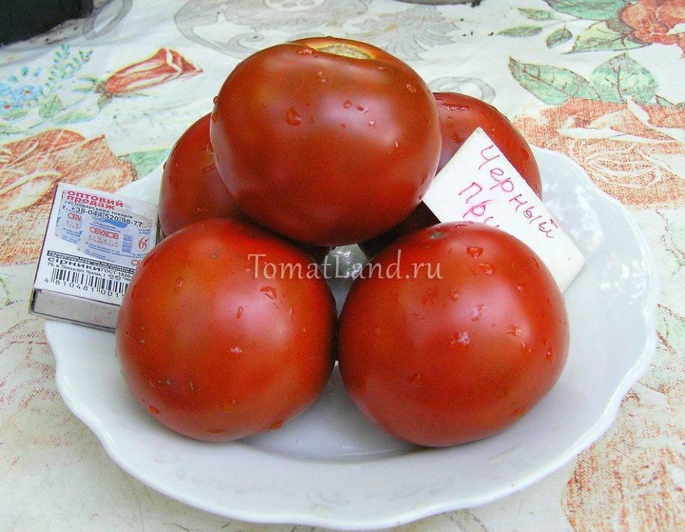 """Томат """"маруся"""": характеристика и описание сорта, урожайность, отзывы, фото"""