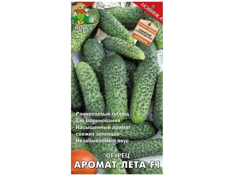 Огурец «аллигатор f1»: характеристика сорта и особенности выращивания