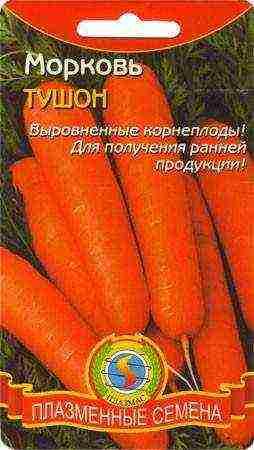Семена моркови на бумаге   во саду и в огороде