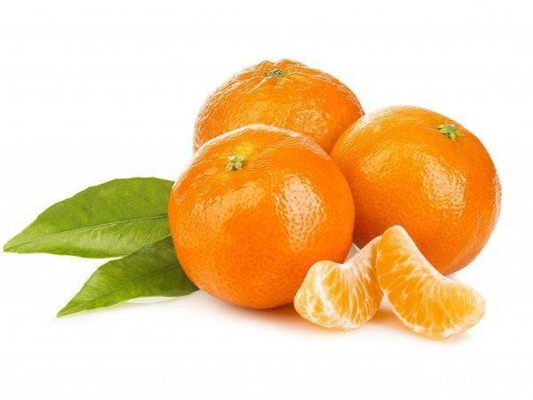 Цитрусовые при беременности: почему тянет, можно ли есть апельсин, лимон, мандарин, грейпфрут, лайм