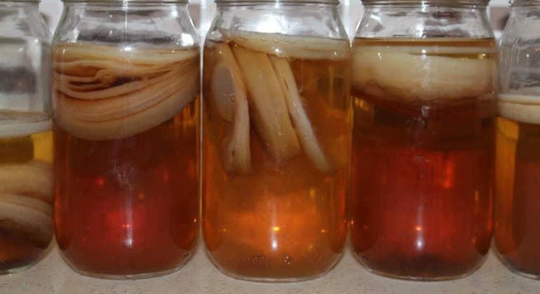 Чайный гриб: больше пользы или вреда?