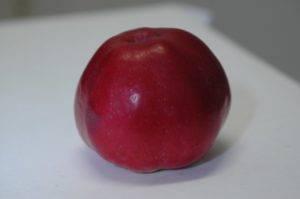 Яблоня подарок графскому: описание сорта, фото, отзывы, посадка