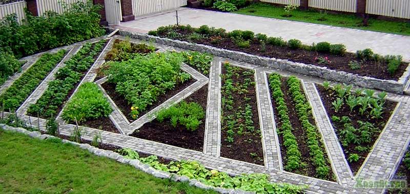 Приусадебный участок: планировка сада и огорода