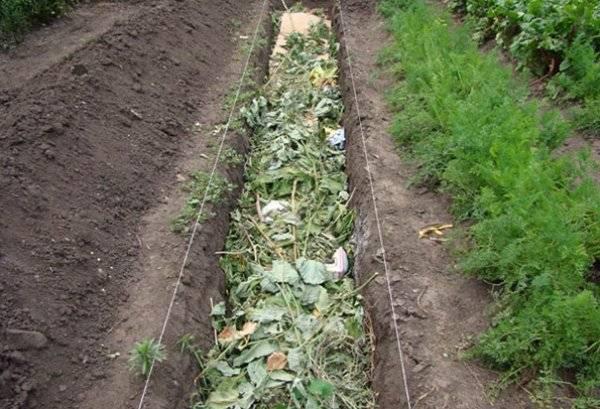 Теплая грядка для получения раннего урожая: способы создания своими руками