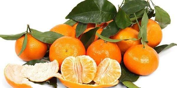 Мандарины и клементины разница: чем отличаются клементины от мандаринов