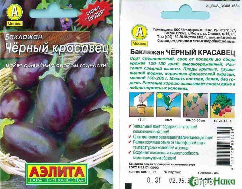 Баклажан черный красавец: описание сорта, фото, характеристика плодов, отзывы, урожайность