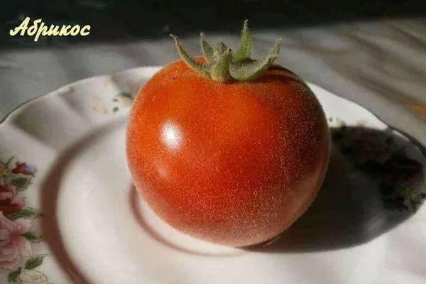 Томат розарио f1: отзывы и фото, описание сорта и характеристика