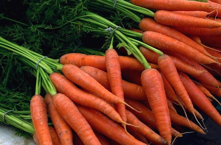 Хранение моркови в погребе или подвале зимой