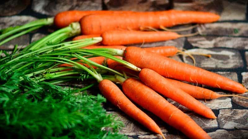 Рецепты диеты при панкреатите | рецепты диеты при остром и хроническом панкреатите | компетентно о здоровье на ilive