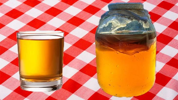 Приготовление напитка комбуча и уход за чайным грибом