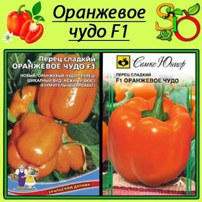 Перец оранжевое чудо: описание и особенности выращивания сорта