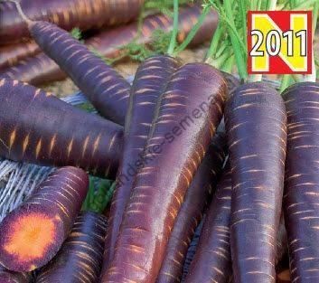 Желтая, белая и фиолетовая морковь: что это и чем отличается от оранжевой