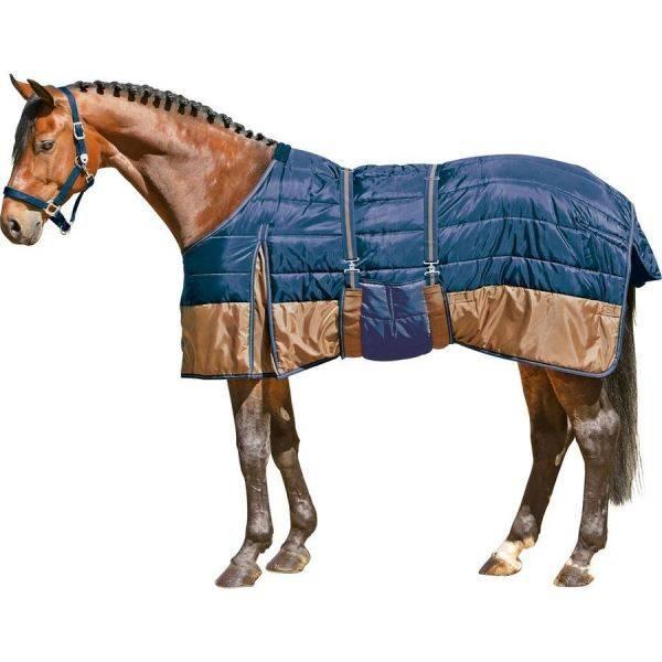 Попона для лошади: нужна ли она?