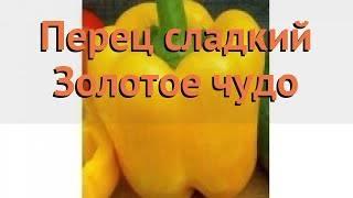 Сладкий перец золотое чудо: характеристика, агротехника выращивания