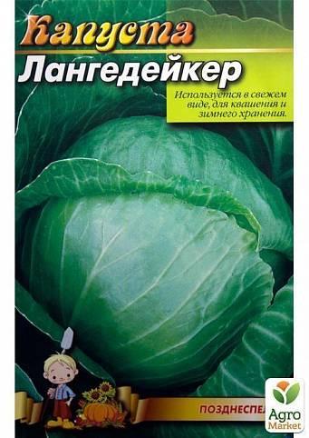 Лучшее сочетание немецкого качества и вкуса — капуста лангедейкер дауэр: описание сорта и отзывы